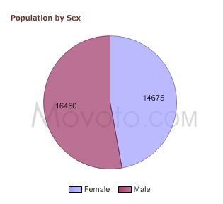 90291-population-by-sex