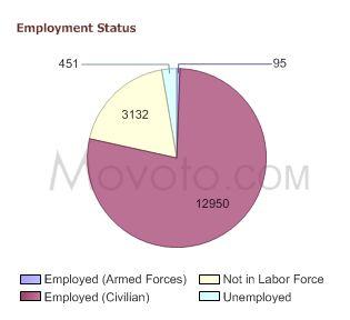 90254-employment-status