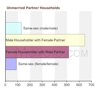 90291-unmarried-partner-households