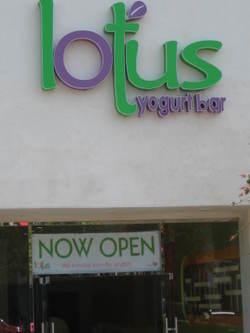 Lotus_yogurt_bar